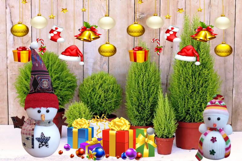 Cuộc Thi Khoảng Khắc Mùa Noel