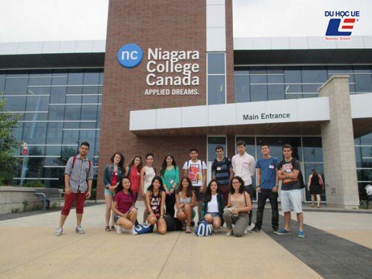 Cao đẳng Niagara