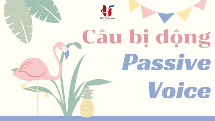 cau-bi-dong-passive-voice-p1